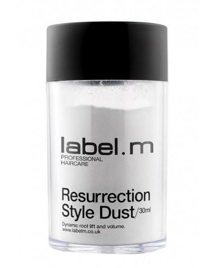 Label m Resurrection Style Dust Objętość włosów 3,5g